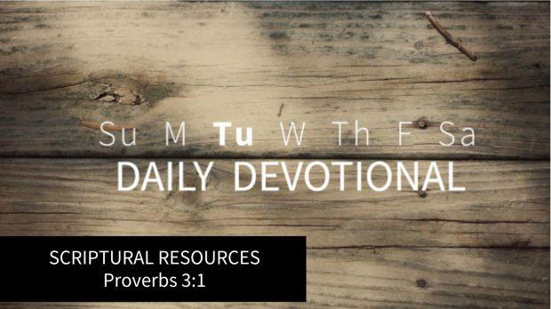 REASON AND ASSUMPTION Matthew 6_25